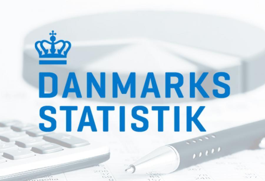 Logo fra Danmarks Statistik