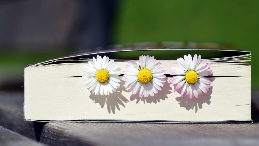 bog med blomster